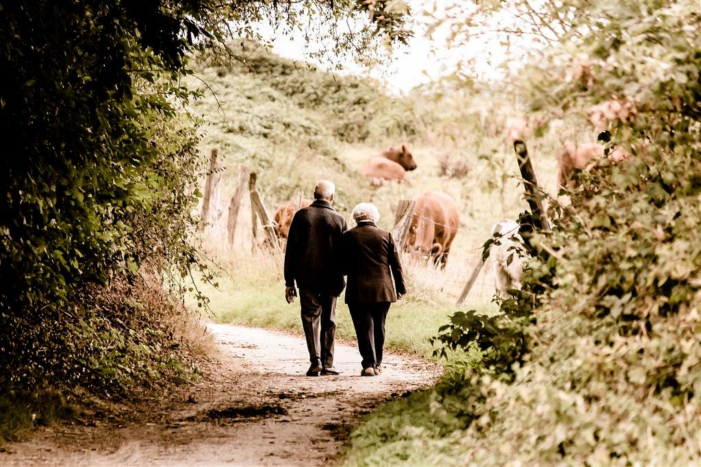 Elderly couple on walk in woods