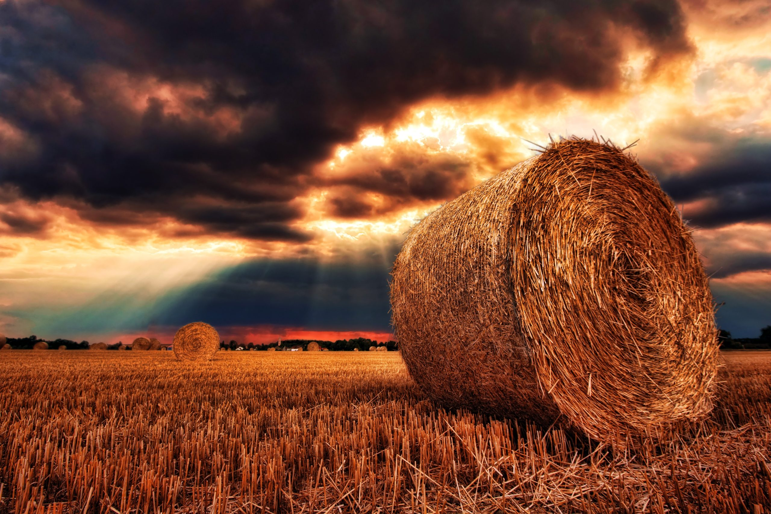 hay bale in field with overcast sky