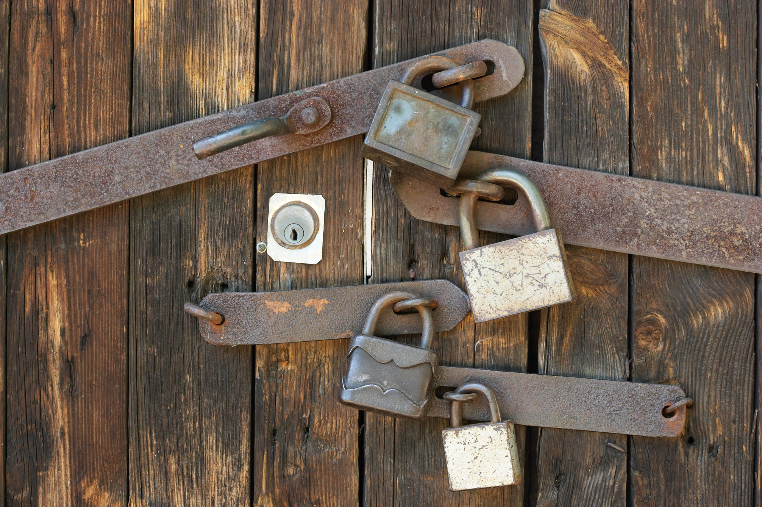Several padlocks and rusted locks on a solid wooden door
